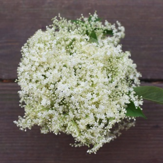 Elderflowers...
